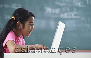 Asia Images Group - girl working at laptop (horizontal)
